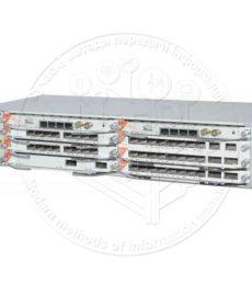Raisecom ITN8800