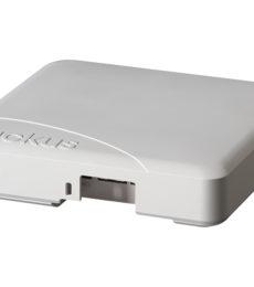 Ruckus ZoneFlex R500